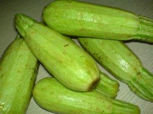 zucchini di dpnq